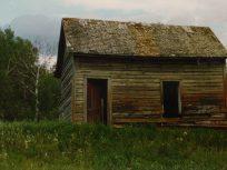 Sweiden family homestead
